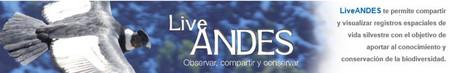 LiveAndesApp, ayuda a preservar la fauna Latinoamerica. El futuro según Microsoft