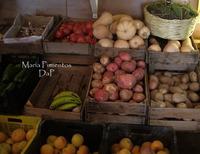 """Jornadas Gastronómicas """"Saborea Guadalhorce 2009, La Cocina de la Huerta"""""""