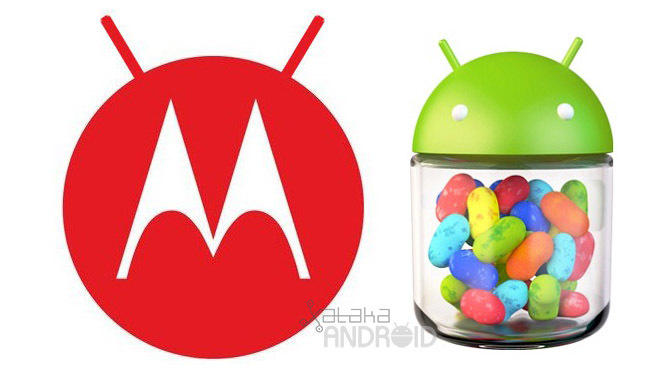 Motorola Android Jelly Bean