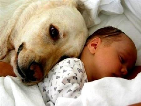 Mascota y bebe