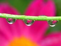 Fotografía en días de lluvia