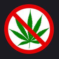 Google Play prohíbe a partir de ahora las aplicaciones de venta de marihuana