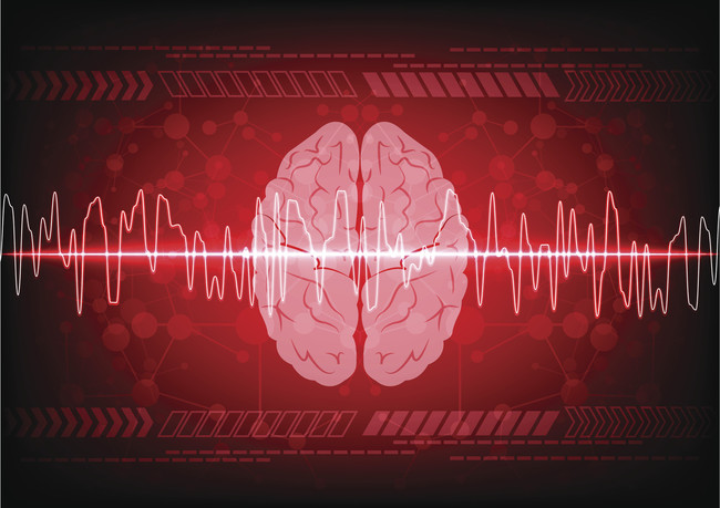 La Salud De Nuestro Cerebro: comestibles que nos asisten a sostenerlo sano