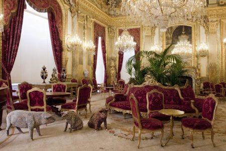 El Museo del Louvre convertido en una pocilga por Will Delvoye