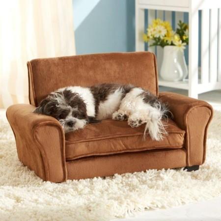 perro sofa 2