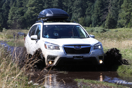 Subaru Forester 2019 11