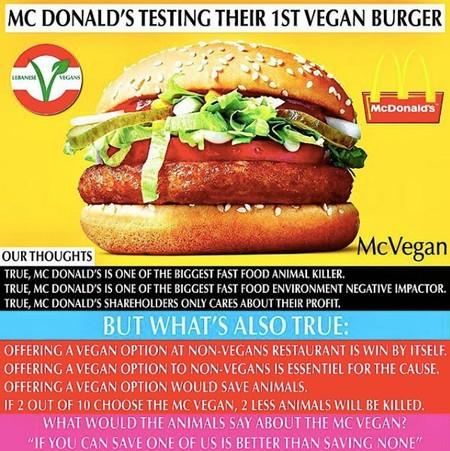 Mcvegan Pro Cons