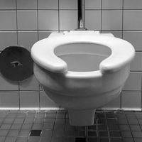 La IA no es capaz de reconocer como tales el 30% de los inodoros del mundo (los de las familias más pobres)