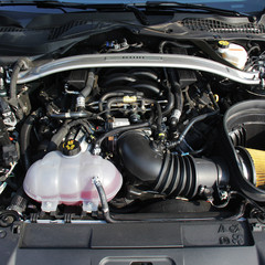 Foto 13 de 30 de la galería ford-mustang-bullitt-1 en Motorpasión México