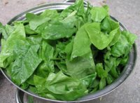 La espinaca: una buena fuente de vitamina C entre las verduras