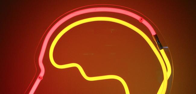 Cerebro Neon