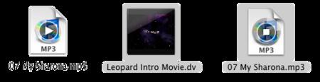 Snow Leopard cuenta con un QuickLook mejorado