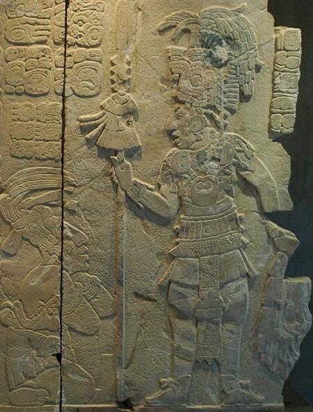 Maya9