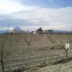 Foto 4 de 6 de la galería nexus-s-prueba-camara en Xataka