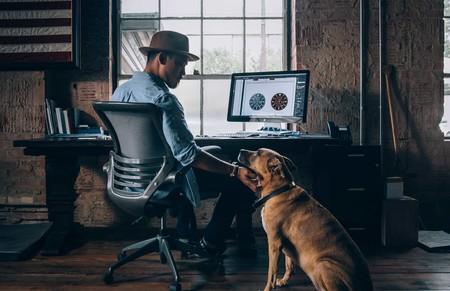 10 Consejos Que Haran Del Teletrabajo Y Tus Conferencias Por Video Un Exito Al Trabajar Desde Casa