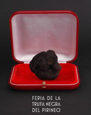 Feria de la trufa negra del pirineo 2009