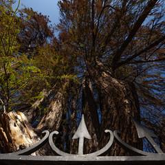Foto 8 de 40 de la galería sigma-14-24mm-f2-8-dg-hsm-art en Xataka Foto