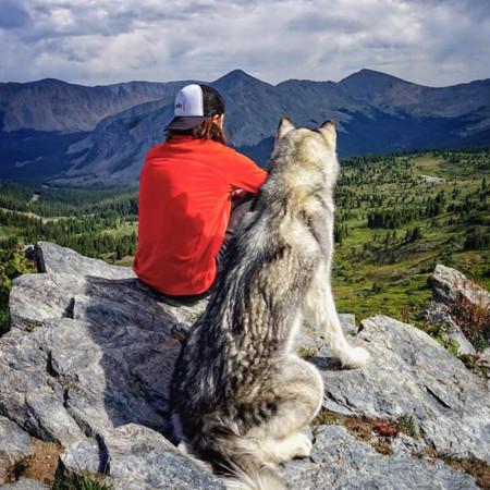 No sin mi perro, los increíbles viajes de Kelly Lung y su perro Loki