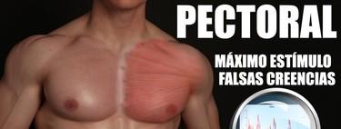 Retracción escapular y arco lumbar ¿implican más el pectoral o no?