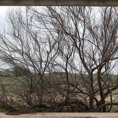 Foto 3 de 13 de la galería sony-a99-ii en Xataka Foto