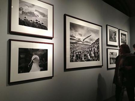 Sebastião Salgado, un pequeño recorrido por su obra fotográfica