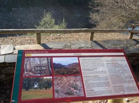 Panel Monfragüe