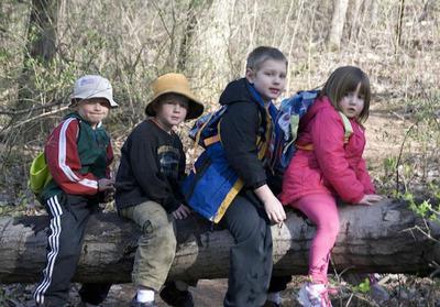 Los efectos negativos de situaciones estresantes para los niños, son menores cuando hay Naturaleza cerca