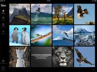 500px saca su aplicación para iPad, y la verdad es que se ve fantástica
