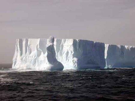 Un grupo de icebergs está de viaje rumbo a Nueva Zelanda
