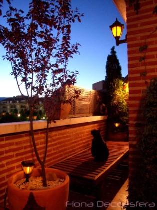 Prepara tu jardín o terraza para el otoño