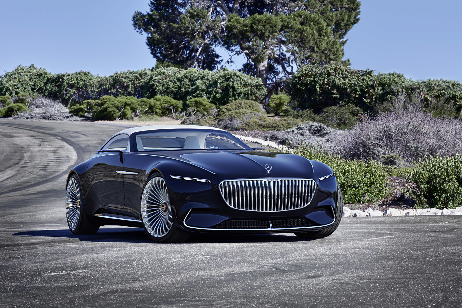 Foto de Vision Mercedes-Maybach 6 Cabriolet (7/12)