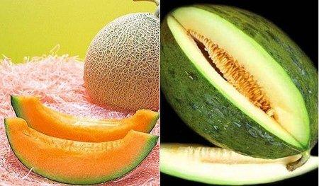 Se secuencia el genoma del melón