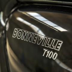 Foto 33 de 50 de la galería triumph-bonneville-t100-y-t100-black-y-triumph-street-cup-1 en Motorpasion Moto