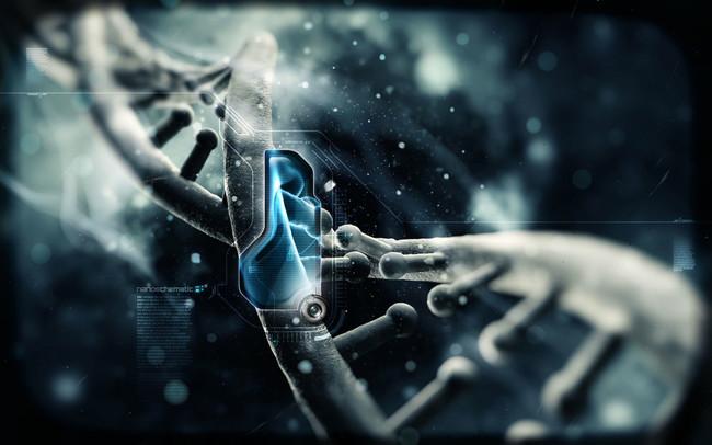 Nanocamiones autónomos de ADN: una esperanza para hacer llegar sustancias a células específicas