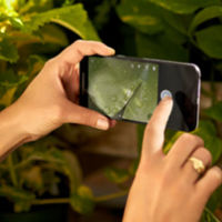 El Nexus 5X cara a cara frente a sus rivales