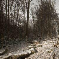Tras avivar los rumores de Silent Hill, el creador de Abandoned da la cara para desmentirlo y empieza a borrar mensajes anteriores