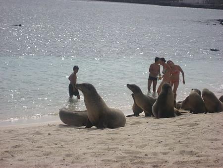 Actividades de playa para quienes no les gusta especialmente la playa (en España)