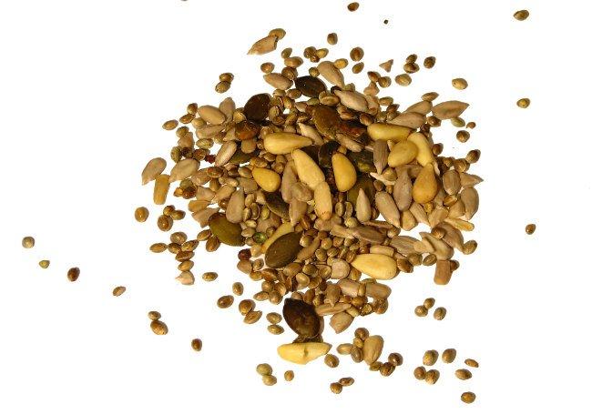 semillas de gem