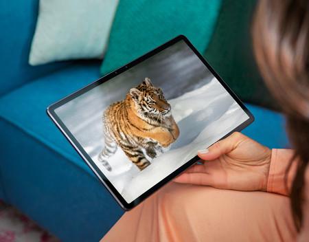 Lenovo Tab P11 Pro Lifestyle Tiger