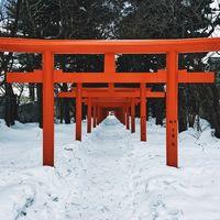 Los destinos perfectos para disfrutar del frío invierno