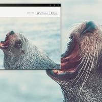 La aplicación para Windows y Mac que te deja cambiar tu wallpaper por hermosas fotos en un solo click