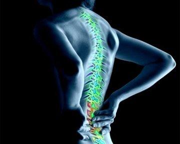 Xataka Ciencia invitada el Congreso Americano de Reumatología en Chicago (y II)