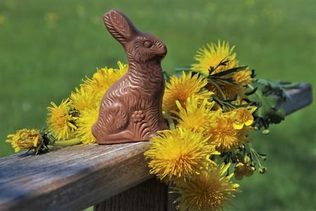 Easter Chocolate Antes De Su Extincion Tipos De Chocolate