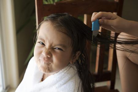 Peinando a una niña con liendrera