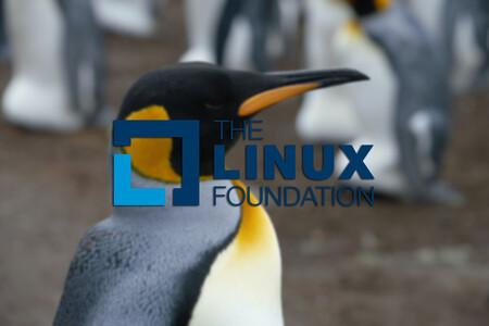 La Fundación Linux ha lanzado un curso gratis para iniciarte en el desarrollo del kernel de Linux