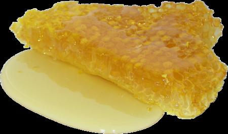 Honey 2201210 1920