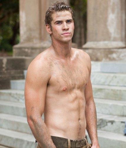 Liam Hemsworth, esto es lo que vió Miley Cyrus