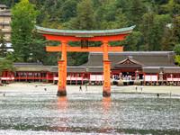 Viajar a Japón: Miyajima