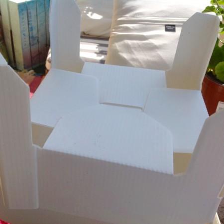 Seedbox Montaje2