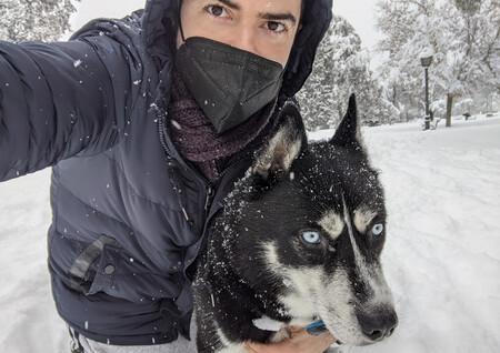 El GPS de mi perro ha hecho que salir de casa sea una competición espartana para ganar a otros perros